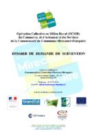 Dossier demande subvention FISAC