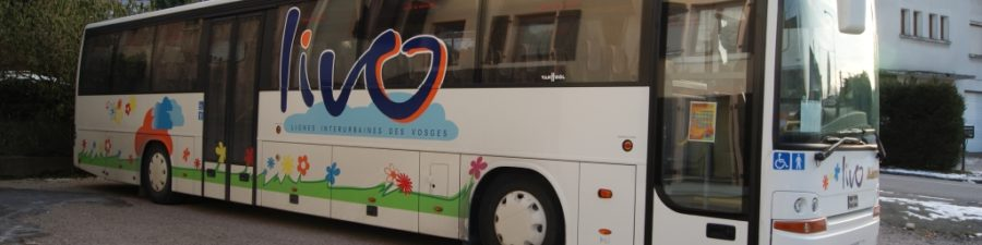 Ligne de bus